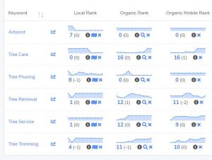 Optimize and Track Keywords for Local SEO in GMB