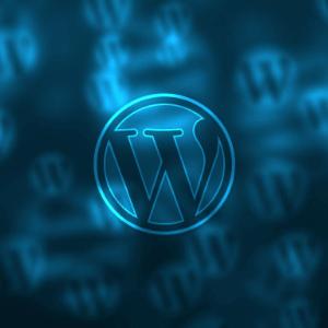 Wordpress Website Workshops