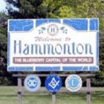Digital Marketing & Advertising in Hammonton, NJ